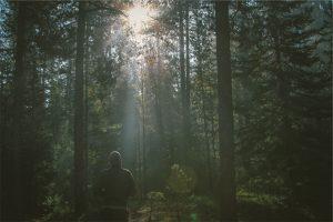 Four Haunted Massachusetts Hikes - Photo
