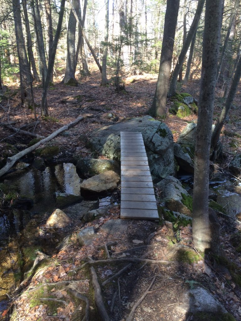 photo shows a wooden plank bridge crossing a small stream in the forest