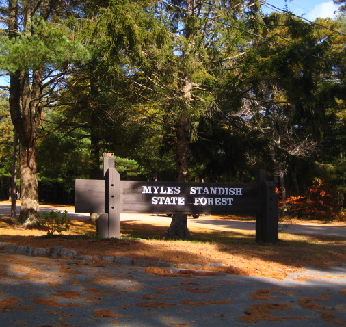 photo shows the sign for the mile standish state forest.